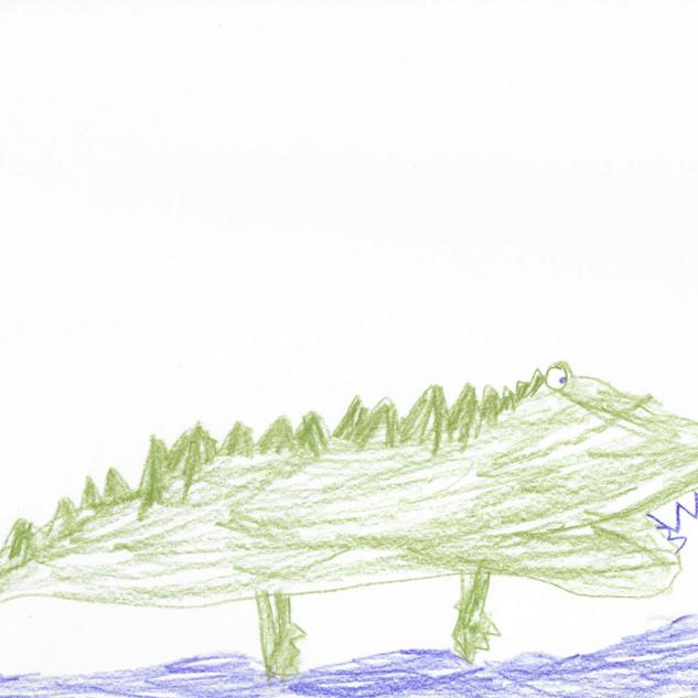 Croc by Kai, 6.jpg