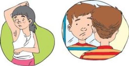 Desarrollo sexual en la adolescencia