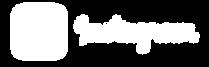 logo-instagram-4096 белый.PNG