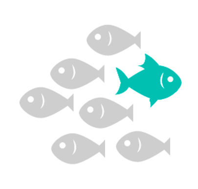 FISH-11.jpg