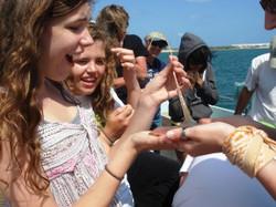 Patti Ashley's biology field trip