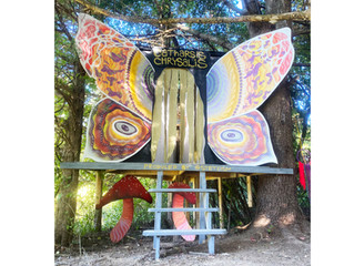 Catharsis Chrysalis Installation at Evolutions Festival