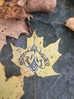 leaf canvas