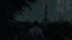 Опасный, дикий лес...