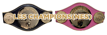 LES CHAMPIONS(NES).png