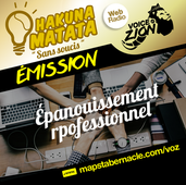 MAPS_VOZ_TRAMEMINIATUREAUDIO_HM_EPANOUISSEMENT PROFESSIONNEL.png