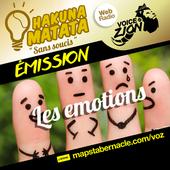MAPS_VOZ_TRAMEMINIATUREAUDIO_HM_LES EMOTIONS.png