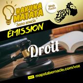 MAPS_VOZ_TRAMEMINIATUREAUDIO_HM_DROIT.png