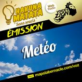 MAPS_VOZ_TRAMEMINIATUREAUDIO_HM_METEO.png