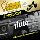 MAPS_VOZ_TRAMEMINIATUREAUDIO_HM_AUTO.png