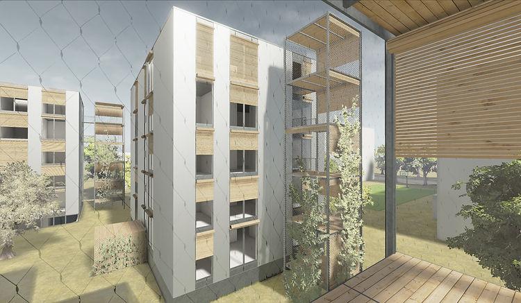 Architecture Concours pour la construction de logements Sion