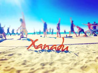 Xanadu Beach Cleanup: Newport Beach