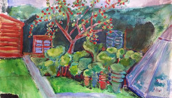 Harvey's apple tree tn.jpg