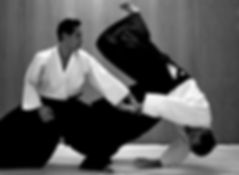 aikido1286.jpg