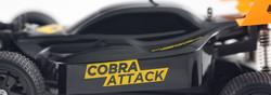 Cobra attack-04.jpg