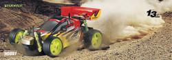 buggy ws02-01.jpg