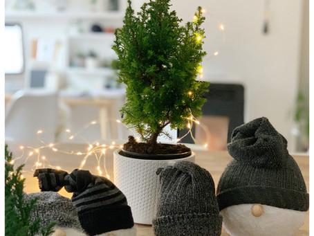 DIY #23: Gnome de Noël