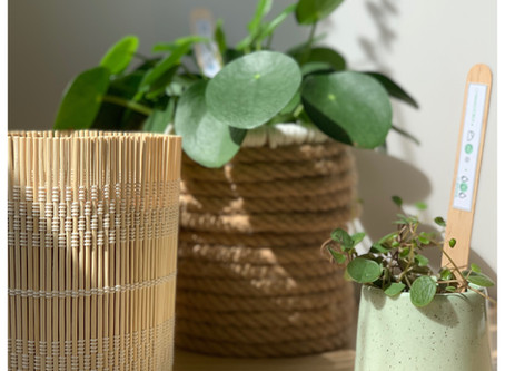 DIY #16: 2 cache-pots style Scandi-boho
