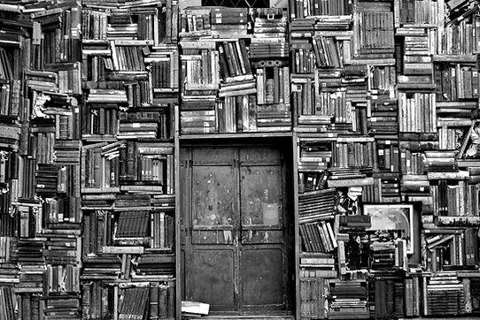 Negro y blanco Biblioteca