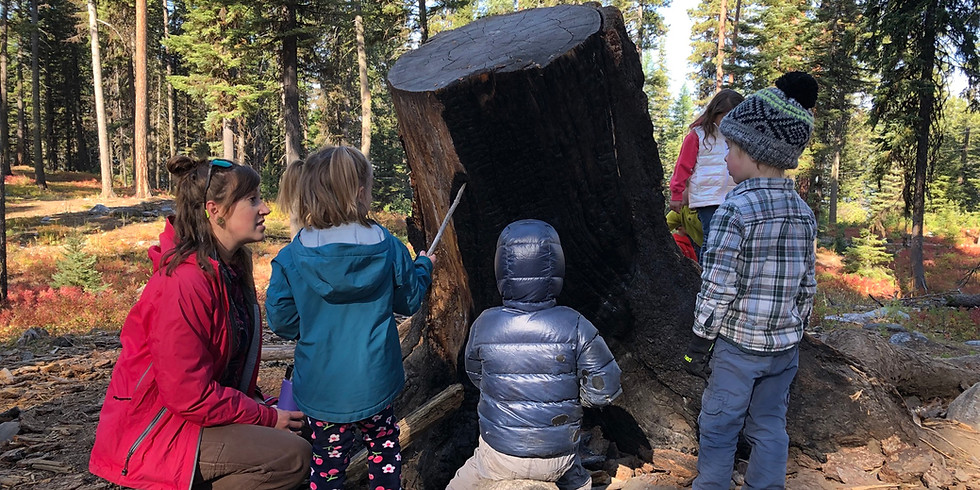 Outdoor Education for Early Learners and Educator of the Year Awards