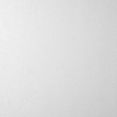 699 - High Gloss Metallic White