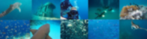 Potápěčské zájezdy na Maledivy