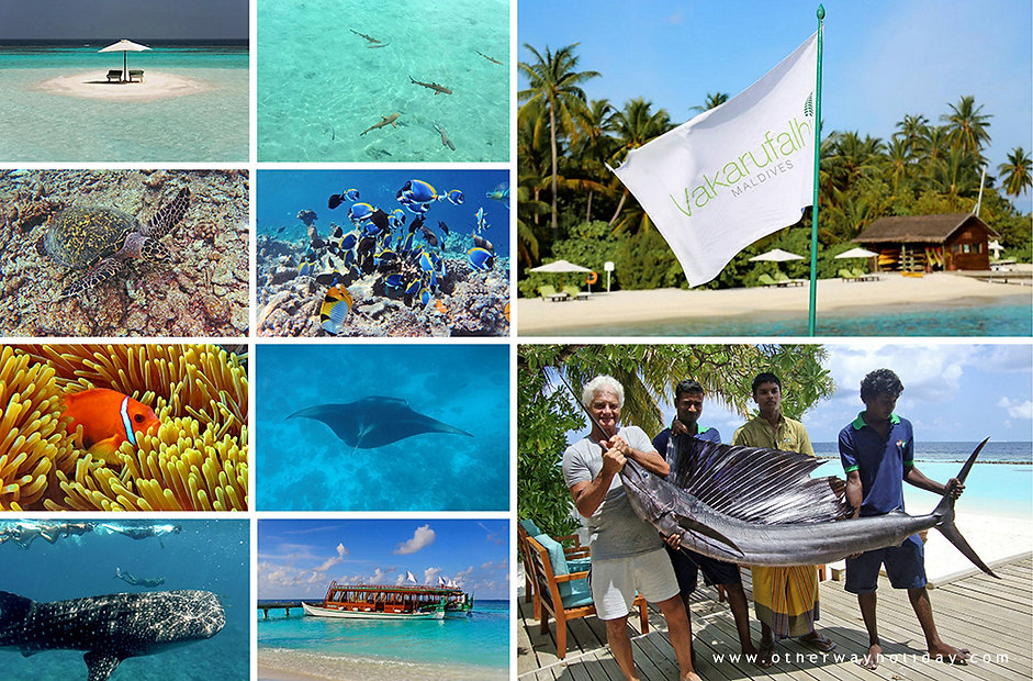 Vakarufalhi, exkurze a aktivity, Malediv