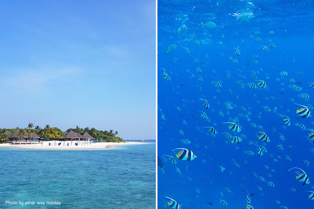 Dusit Thani, Maledivy