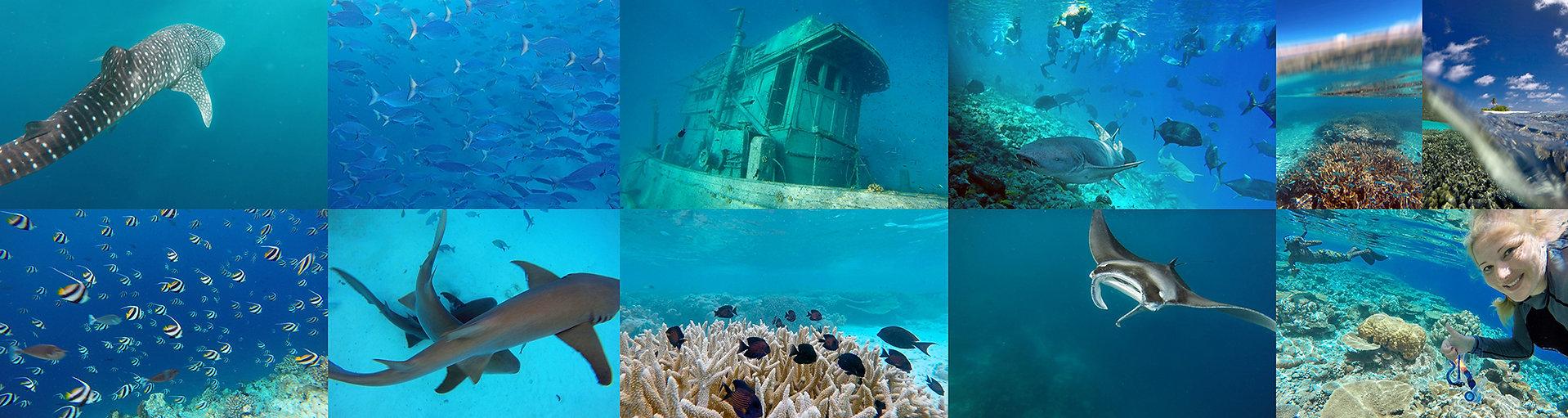 Dovolená na Maledivách se šnorchlováním