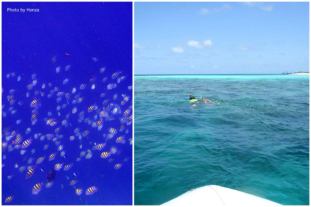 Maledivy - šnorchlování