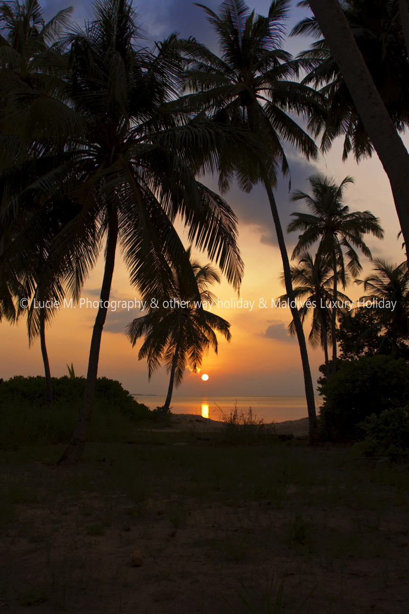 Flickr - Sunset in Dhangethi