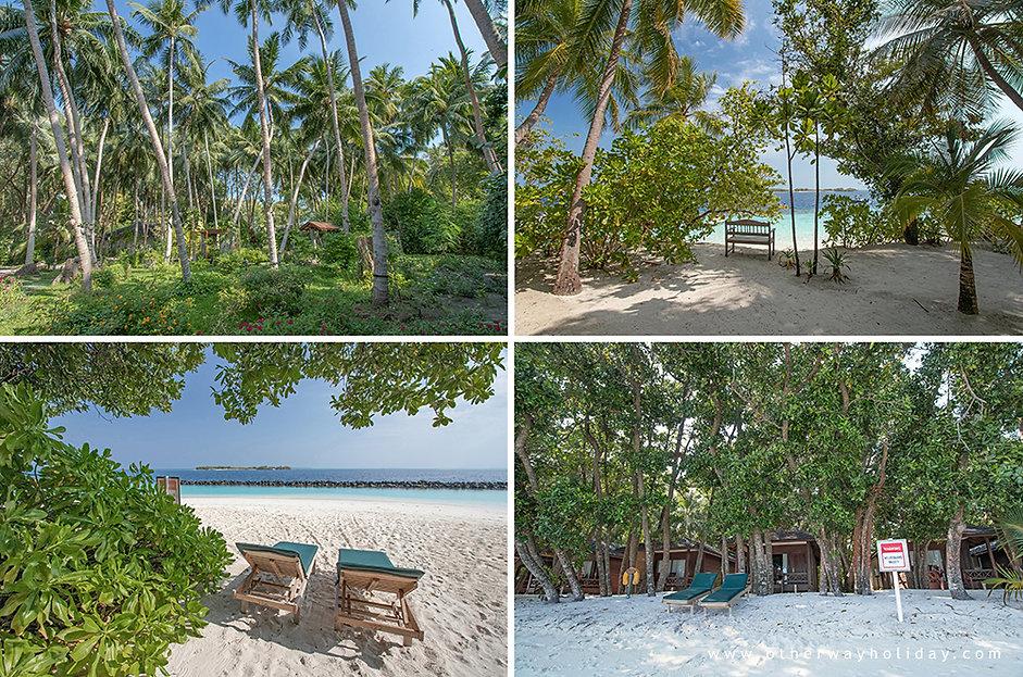 Royal Island Resort & Spa, Baa atol, Maledivy (6).jpg