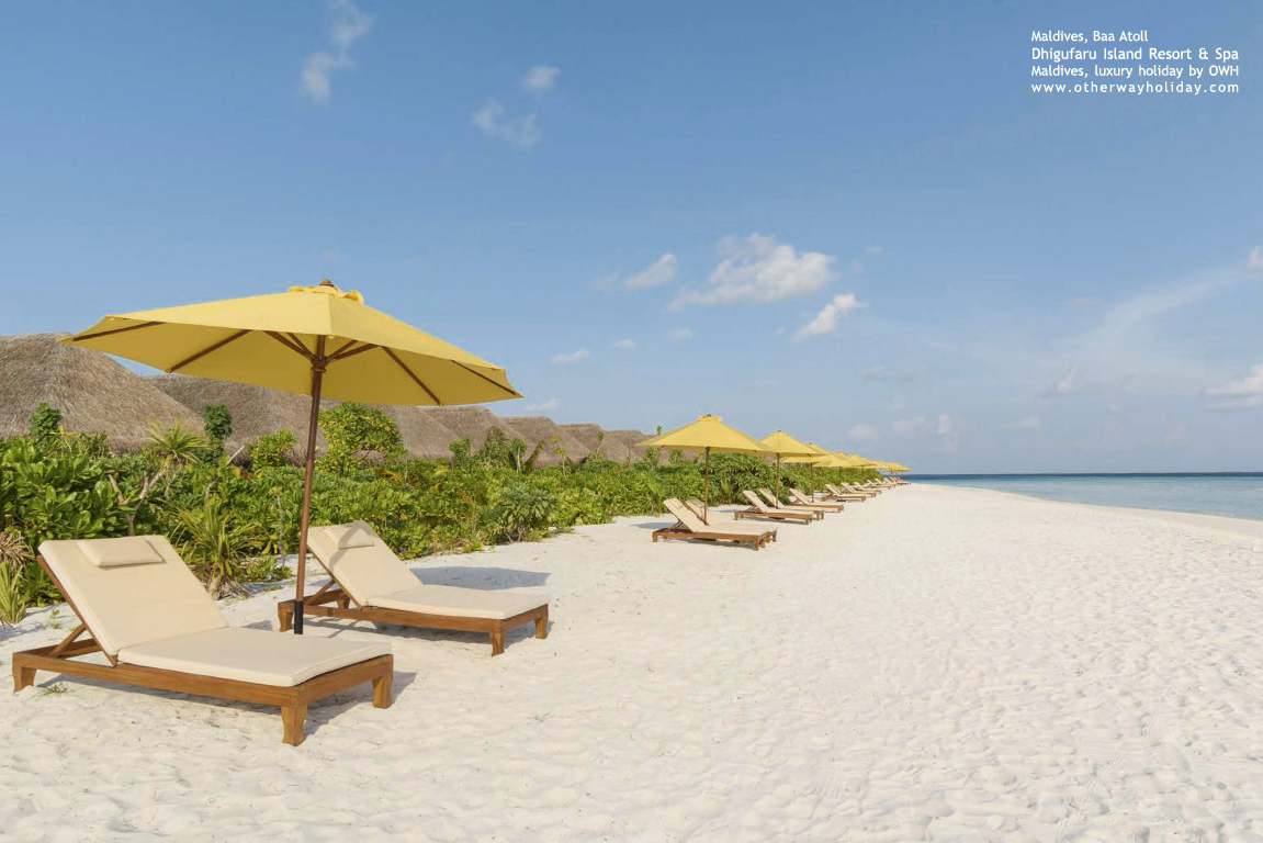 Dhigufaru Island Resort, Baa Atoll, Maldives_22 - Beach Villas