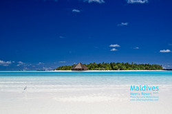 Flickr - Meeru Resort
