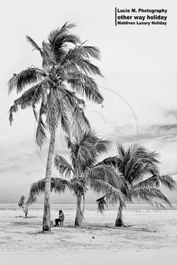 Flickr - Local Island Maafushi