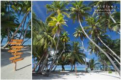 Plumeria Private Beach