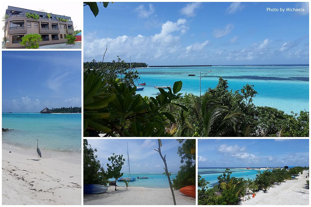 Bibee, Rashu Hiyaa, Dhiffushi, severní Male atol, Maledivy