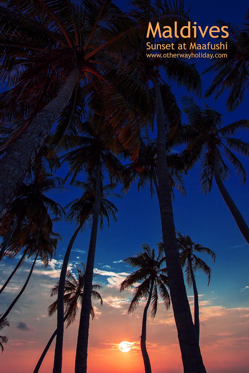 Flickr - Sunset at Maafushi - Bikini Beach