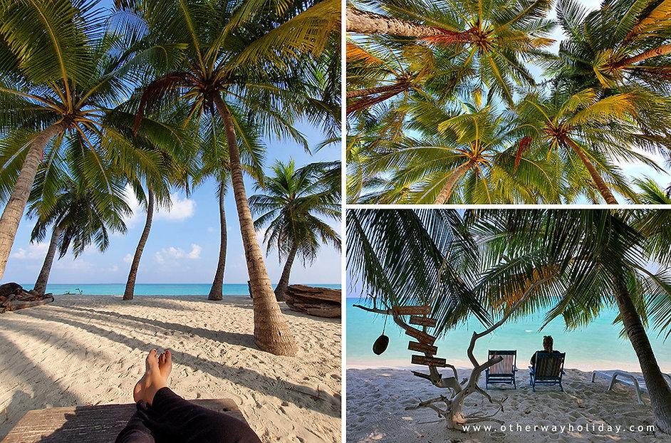 Vashafaru, Haa Alif, Maledivy v Covid-19