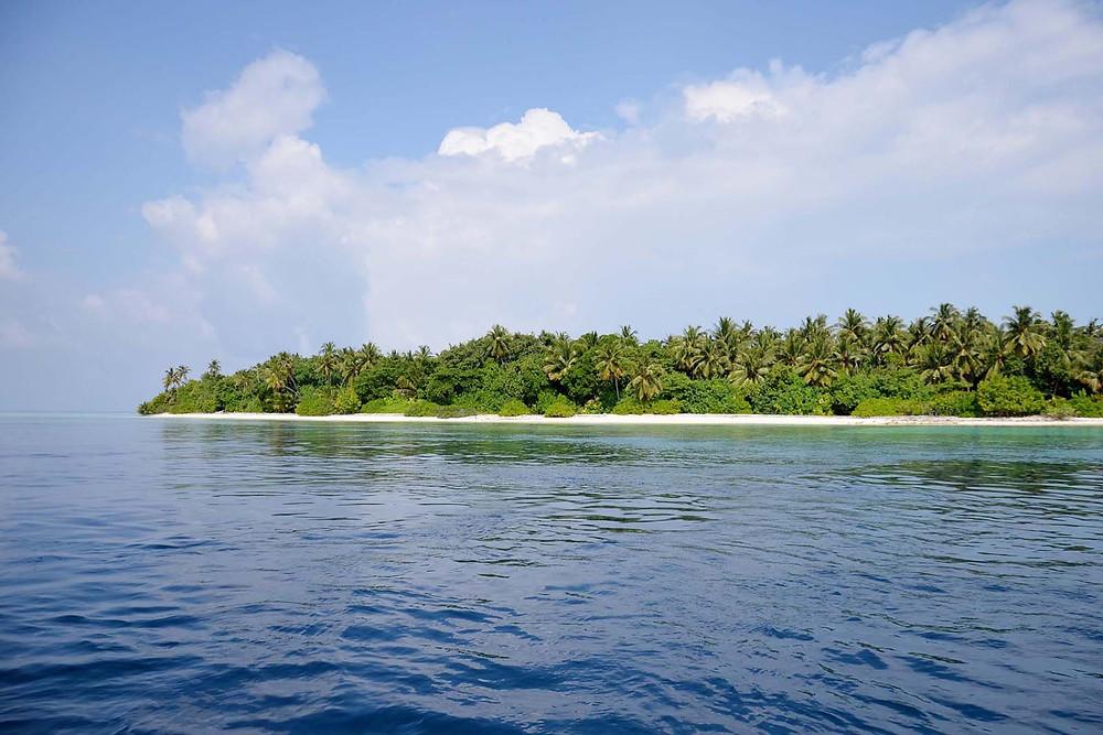 Ostrov Thinadhoo, Vaavu atol, Maledivy