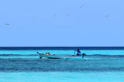 Flickr - Local Fisherman