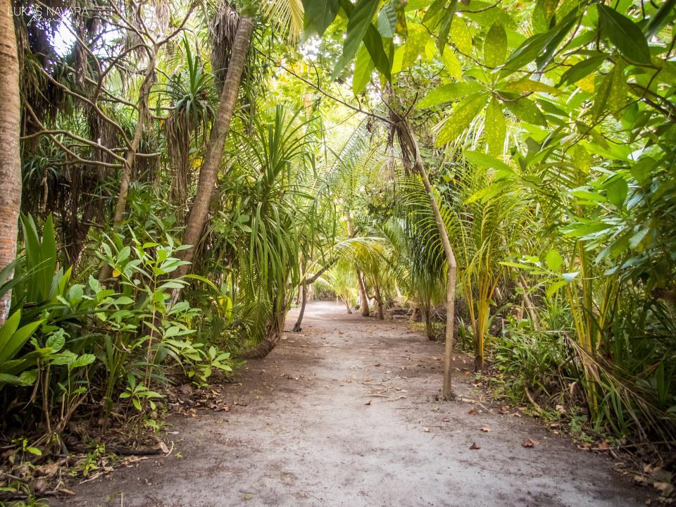 17. Thinadhoo, Maledivy