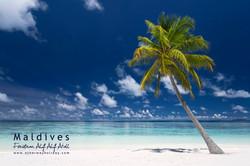Feridhoo, Alif Alif Atoll, Maledivy