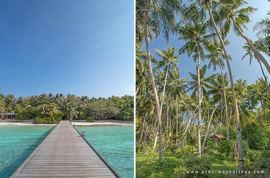 Royal Island Resort & Spa, Baa atol, Maledivy (9).jpg