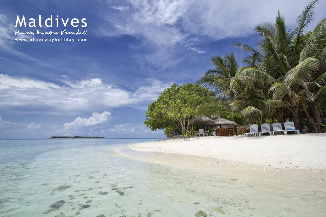 Plumeria Maldives, Thinadhoo, Vaavu Atoll