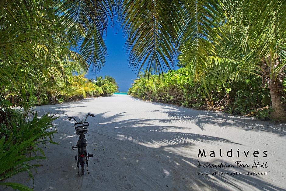 Fehendhoo, Goidhoo atol, Maledivy