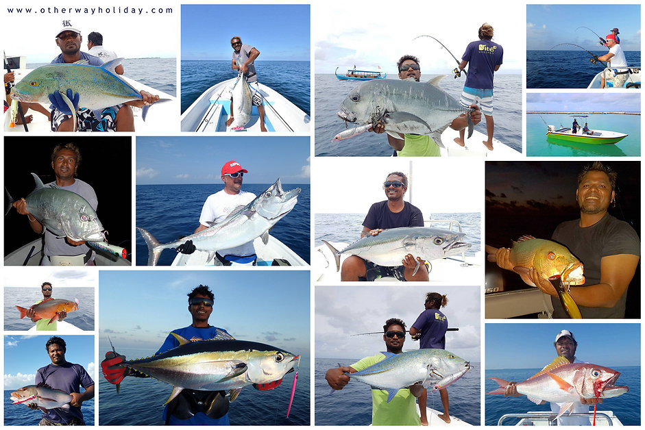 Jigging, Popping, Trolling, Fishing, Big Game Fishing, Maldives, Rybolov, Maledivy