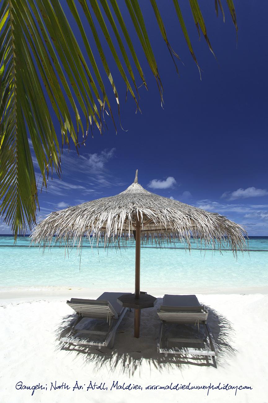 Gangehi, Maledivy