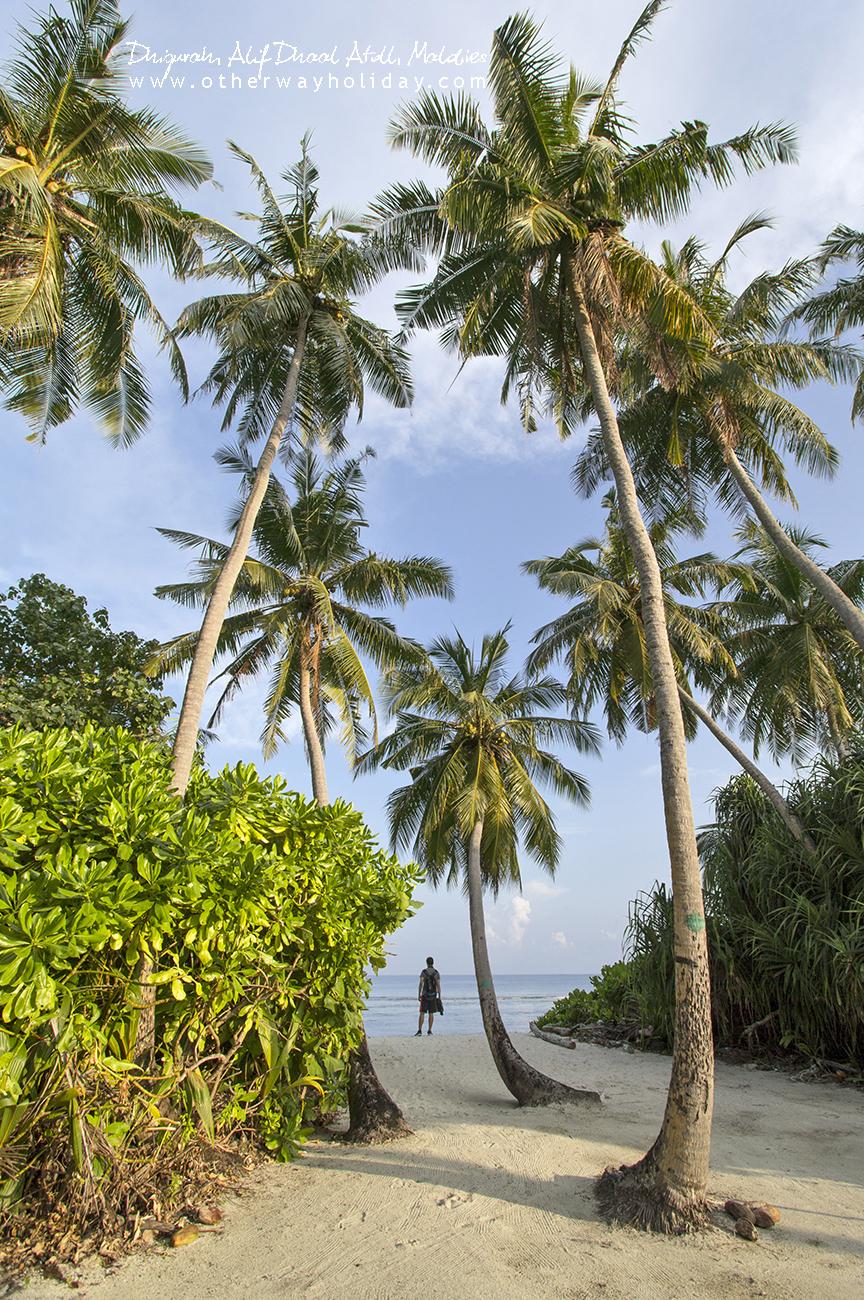Dhigurah, Alif Dhaal, Maledivy