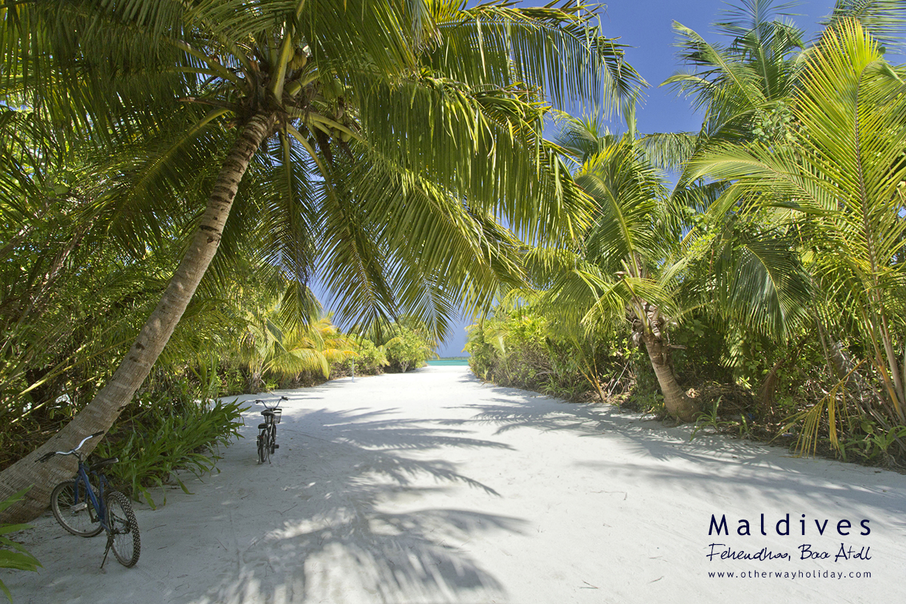 Fehendhoo, Baa Atoll, Maldives (6)